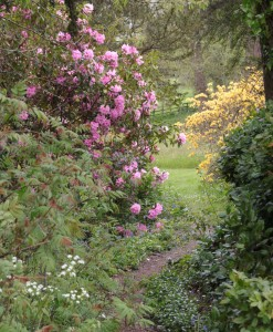 Forde Abbey garden walk